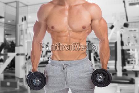 bodybuilder bodybuilding muskeln oberkoerper fitnessstudio training