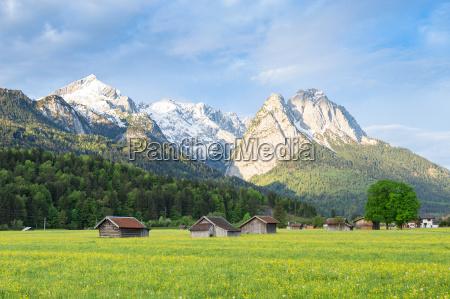 bayerische ruhige landschaft mit schneebedeckten alpen