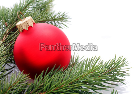 red christmas ball and fir branches