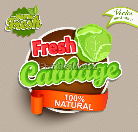 fresh cabbage logo lettering