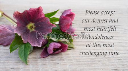english mourning card with purple