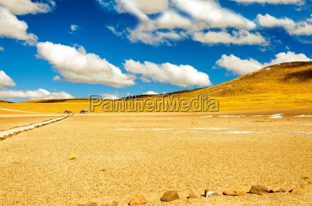 yellow chilean landscape