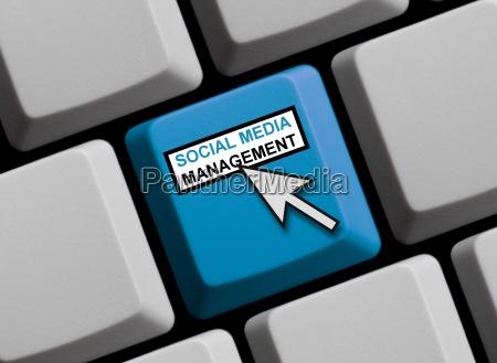 social media management online