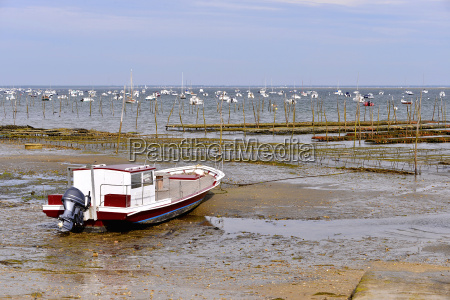 boat and oyster bed of lege