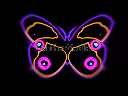 neon butterfly isolated on black background