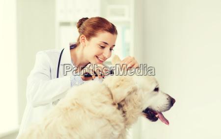 gluecklicher doktor mit otoscope und hund