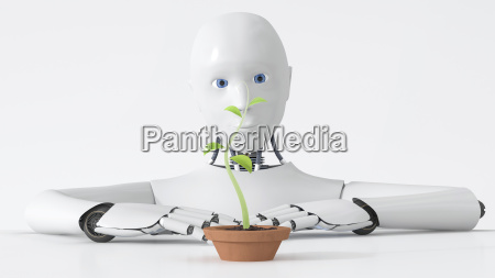 robot watching green plant growing in