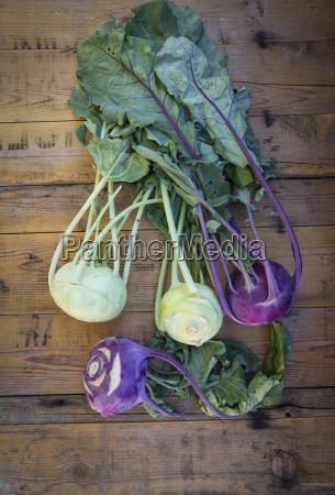 white and purple turnip cabbage