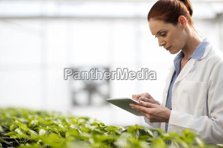 weibliche wissenschaftler pflanzen im gewaechshaus ueberprueft