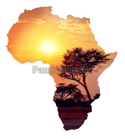 afrikanischer sonnenuntergang mit akazien karte von