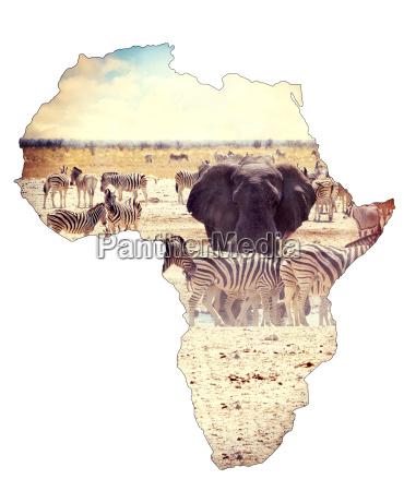 karte des afrikanischen kontinentalkonzepts safari auf