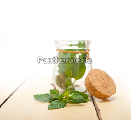fresh mint leaves on a glass