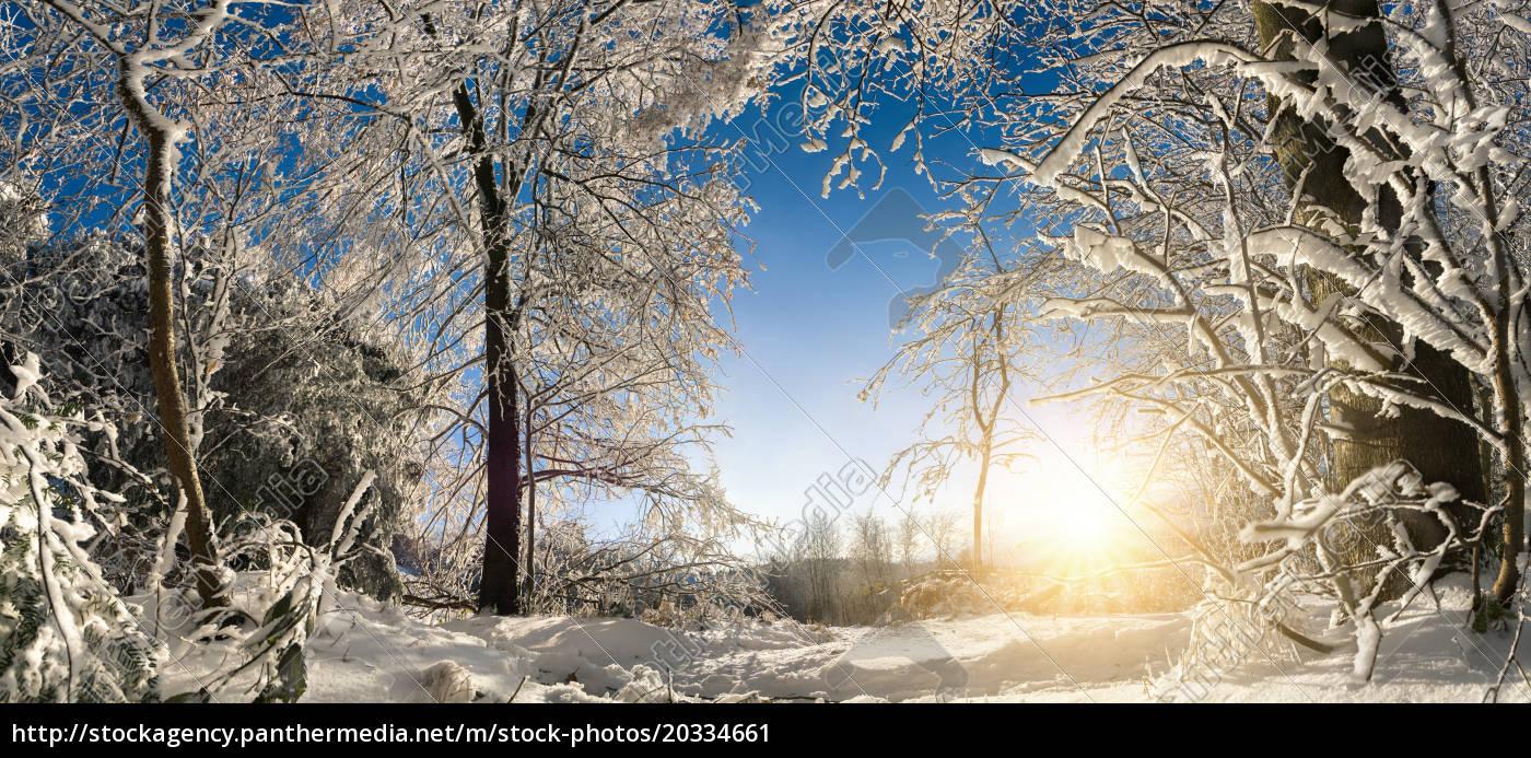 verzauberte, winterlandschaft, mit, sonne, , schnee, auf - 20334661