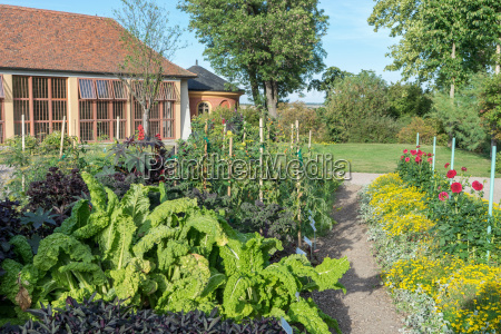 vegetation and ornamental garden with orangery