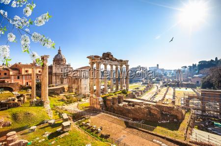 roemische ruinen in rom forum