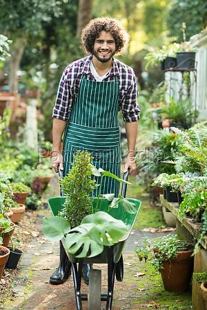 male gardener carrying plants in wheelbarrow