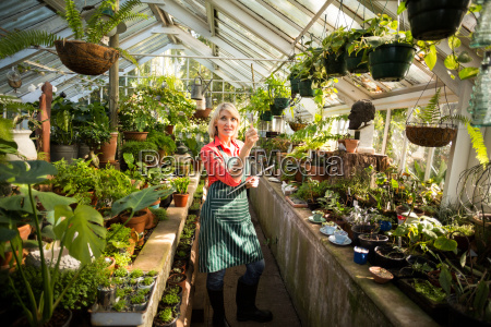 female gardener examining plants at greenhouse