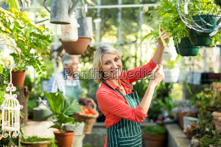 mature woman inspecting potted plants at