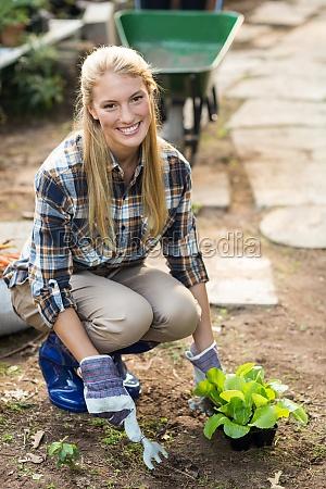 weibliche gaertnerpflanzung ausserhalb des gewaechshauses