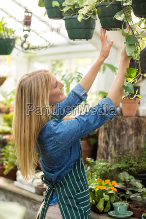 happy woman hanging potted plants