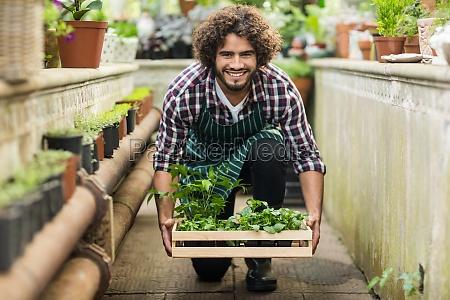 male gardener keeping plants crate on