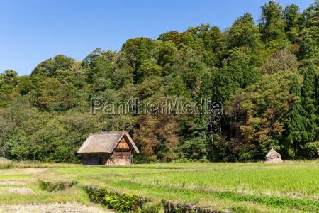 shirakawa go historic old village