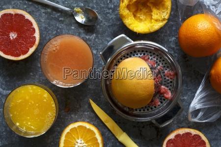 manual metal citrus fruit extractor next