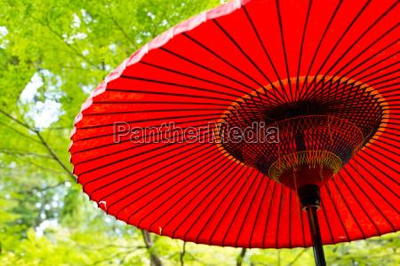japanese red umbrella under green tree