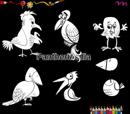fantasy birds set coloring page