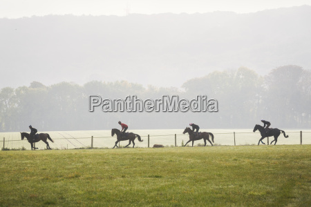 group of people on brown horses