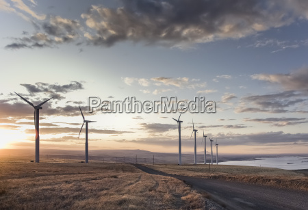 a group of wind turbines standing