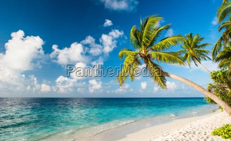einsamer strand auf den malediven - lizenzfreies bild