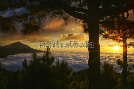 spain tenerife sunset at teide national