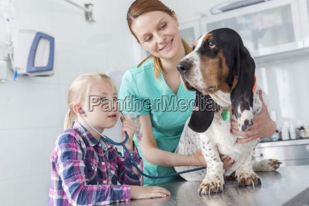 girl and veterinarian assistant examining dog