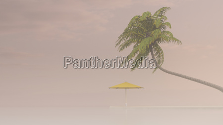 coconut palm and sunshade in haze