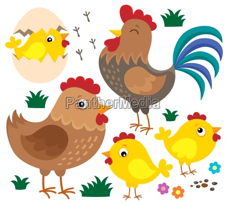chicken thematic set 1