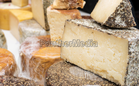 different sorts of hard cheese as
