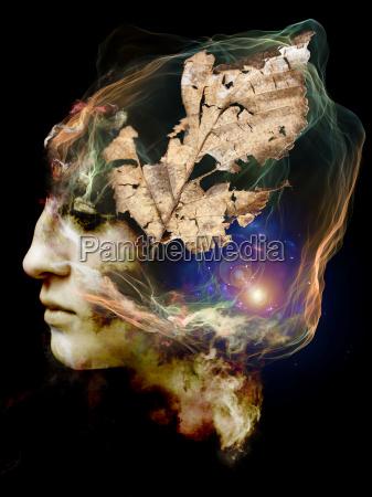 das innere leben deines schattens