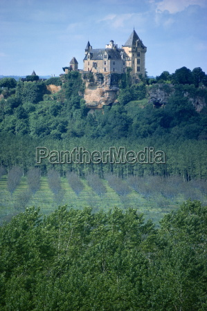walnut trees in foreground montfort dordogne