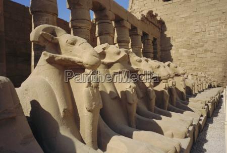 temple of karnak luxor egypt north