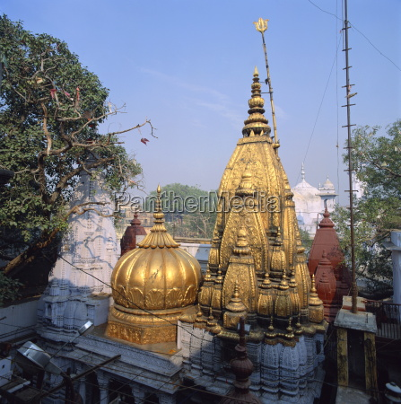 the golden temple of vishwanath holiest