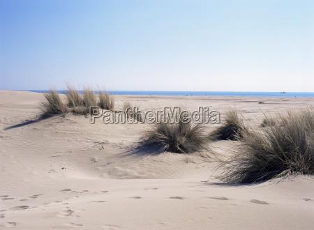 sand dunes at plage de lespiette