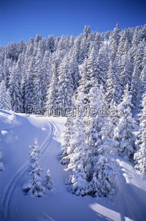 fresh snow meribel trois vallees haute
