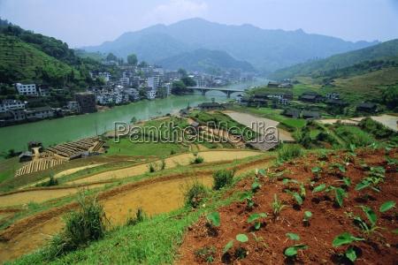 rice paddies and brick maker at