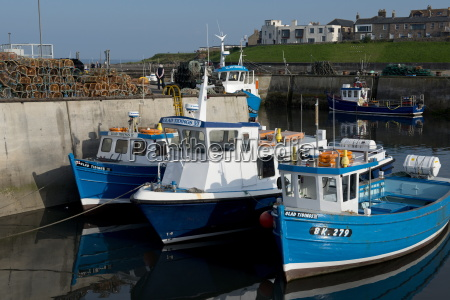 fishing boats and farne island excursion