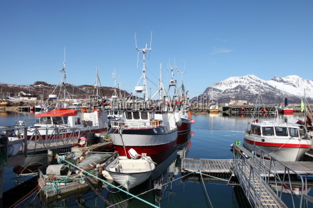 fishing boats in tomvik harbour kvaloya
