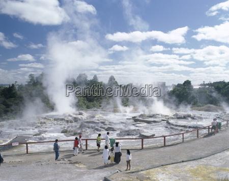 pohutu, geyser, , whakarewarewa, , rotorua, thermal, area, - 20600793