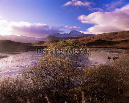rannoch moor black mount strathclyde scotland