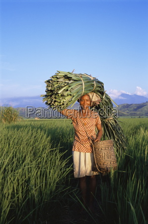 woman carrying palm fronds standing in