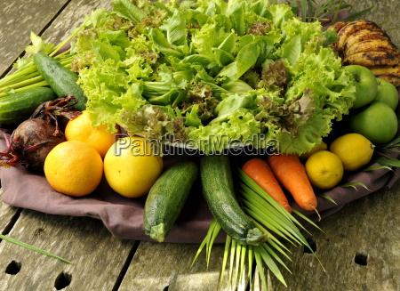 bio gemuese im the farm health
